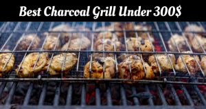 Best Charcoal Grill Under 300 In 2021