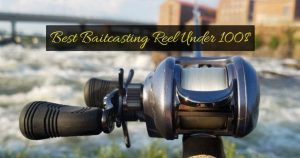 Best Baitcasting Reel Under 100$